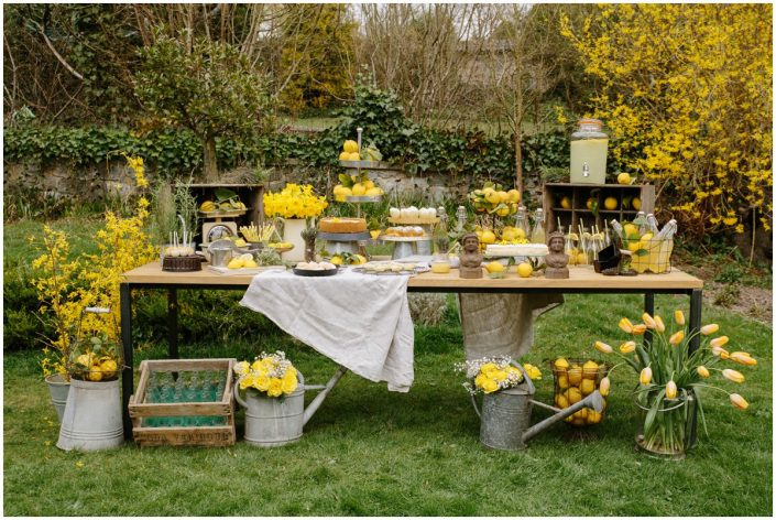 shooting inspiration, un zeste de printemps, citron, nature, corporate, photographe, décoration, louise's party, steve collin